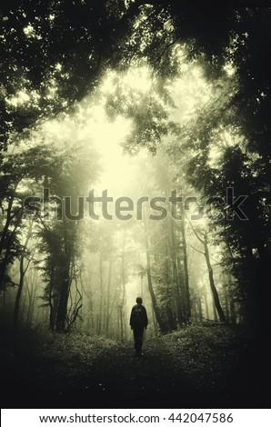 man in dark green forest - stock photo