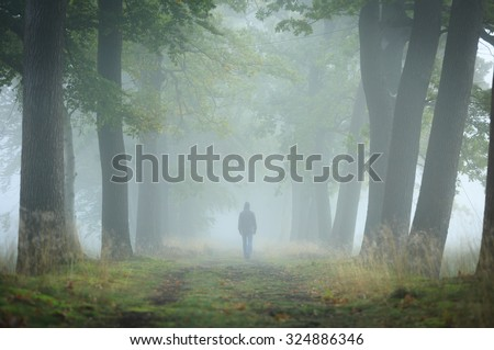 Man in hoody walking alone in a lane on a foggy, autumn morning. Shallow D.O.F. - stock photo