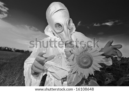 Man in protective suits and gas mask on sunflower field