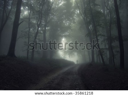 man in the forest fog - stock photo