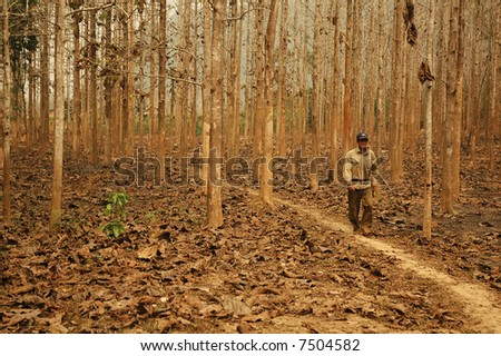 Man in the forest. Lao - stock photo