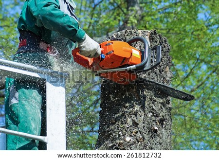 Man is cutting a tree with a chainsaw - stock photo