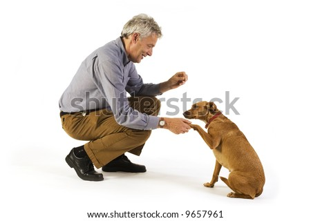 man is dog training obedience - stock photo