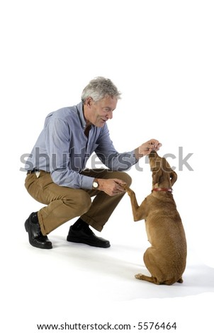 man is training obedience with little brown dog - stock photo