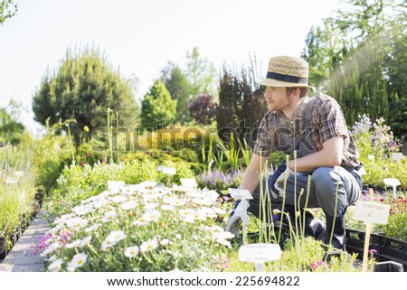 Man looking away while gardening at plant nursery - stock photo