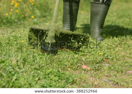 man mows the grass trimmer - stock photo
