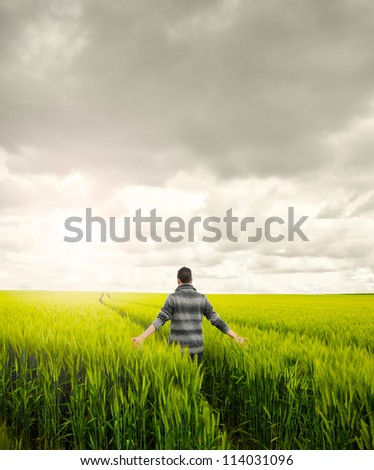 Man on a field. Man walking on a wheat field looking for a peace moment. Reaching relax and peace