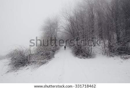 man on snowy path in forest minimal winter landscape - stock photo