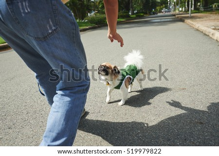 Man playing with his dog outdoors