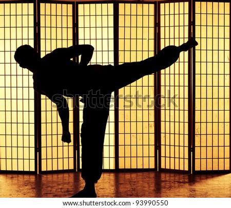 Man practicing a martial art kung fu kick - stock photo