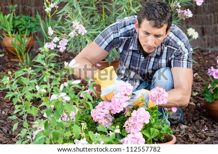 Man pruning flowers and gardening. Male home gardener leisure. Caucasian young model and plants. - stock photo