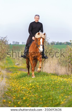 Man riding horse in summer meadow. - stock photo