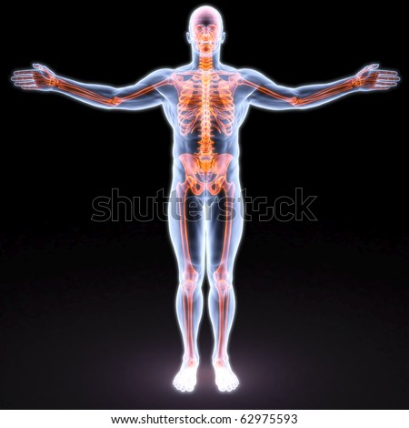 man's body under X-rays. bones are highlighted in red. - stock photo