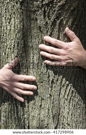 Man's hands hugging tree