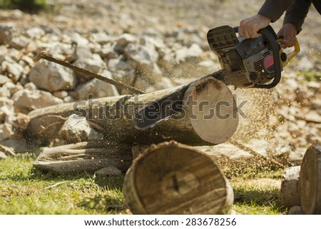 Man sawing a log in his back yard.  - stock photo