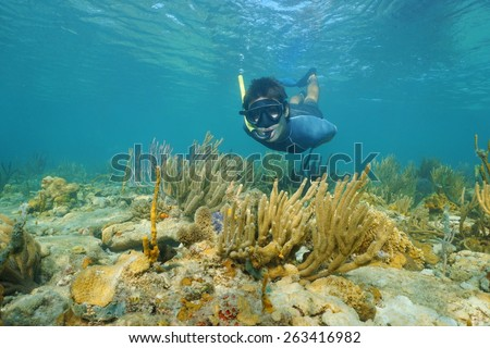 Man snorkeling underwater looks at the camera on a shallow reef with soft corals, Caribbean sea, Panama - stock photo
