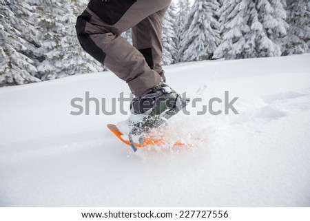 Man snowshoeing in winter forest  - stock photo