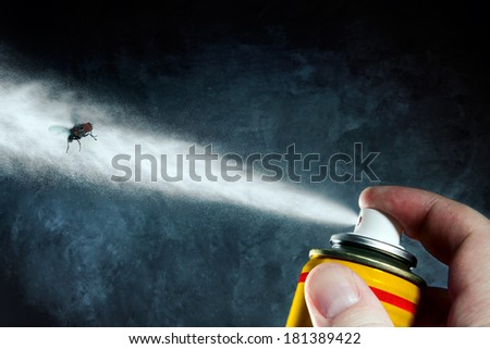 Man spraying on a fly a poisonous aerosol - stock photo