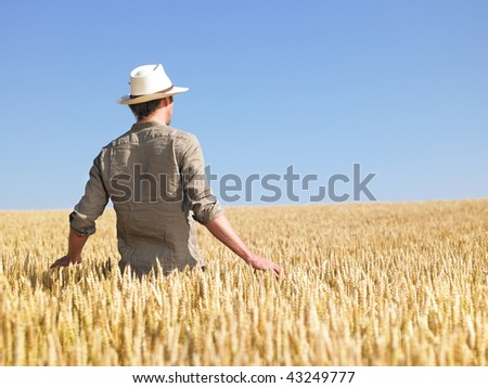 Man standing in wheat field. Horizontally framed shot. - stock photo