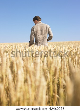 Man standing in wheat field. Vertically framed shot. - stock photo