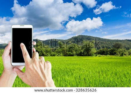 Man use mobile phone on the car, cornfield in the background.  - stock photo