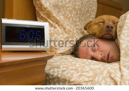 Man waking up with dog comfortably sleeping in - stock photo