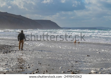 Man walking dogs on the beach - stock photo