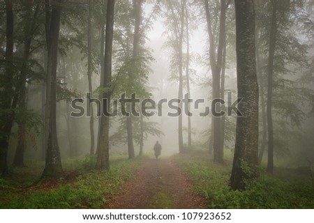 man walking in a forest