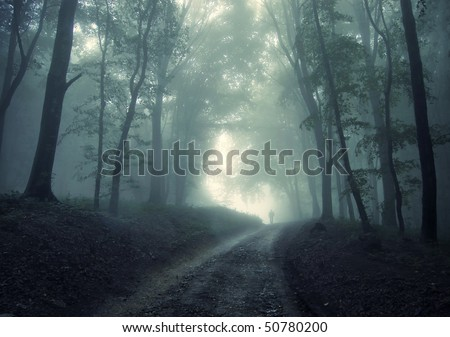 man walking in a green forest with fog - stock photo