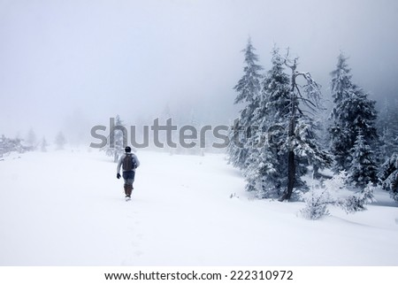 Man walking in beautiful winter landscape  - stock photo