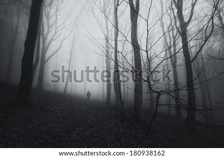 man walking in dark spooky forest with fog - stock photo