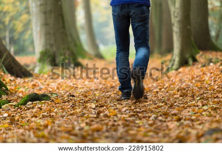 Man walking in the forest on an autumn day. - stock photo