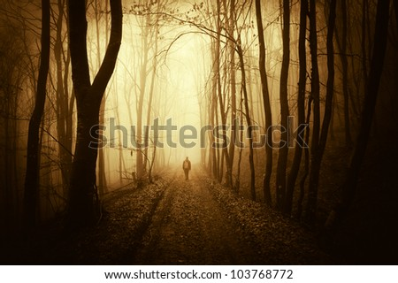 man walking on a forest road at sunset - stock photo