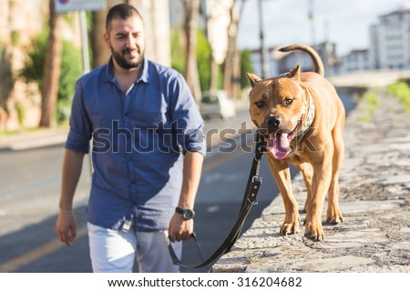 Man walking with his dog. A man  is walking next to the river with his dog on a leash. He is looking at the dog and is wearing summer clothes. - stock photo