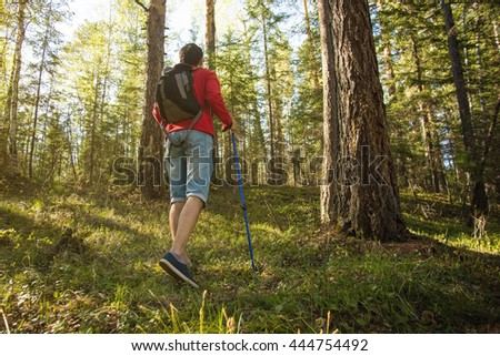 man walks in the woods with a backpack on sunset background