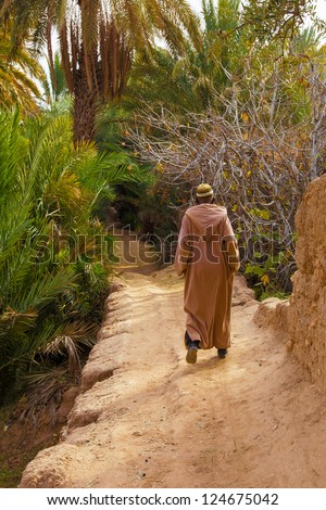 Man wearing a traditional long robe walks down a dirt path into a green desert oasis filled with palm trees.  Location: Morocco - stock photo