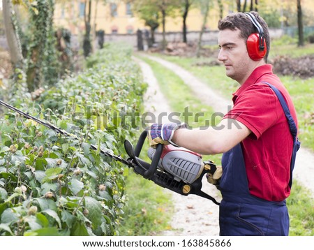 man wearing  ear protectors trimming the bush in the backyard with petrol  bush trimmer - stock photo