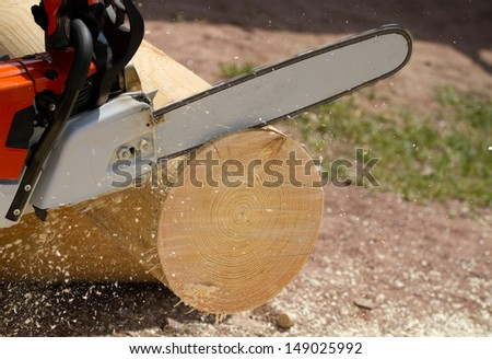 Man with chainsaw cutting the tree - stock photo