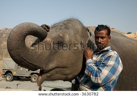 Man with Elephant in India - stock photo