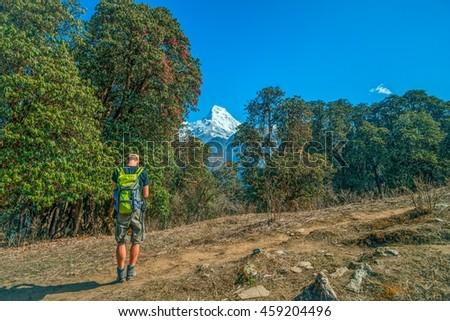 Man with the map on trekking on Annapurna mountain region, Nepal - stock photo