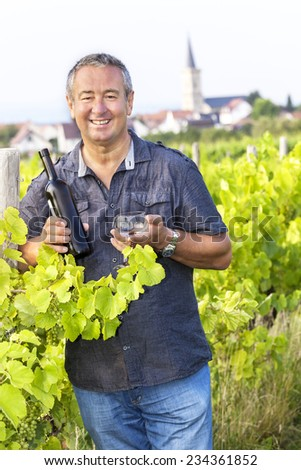 Man with wine bottle and glasses in vineyard - stock photo