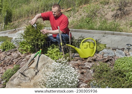 Man working in the garden, summer day in the garden - stock photo