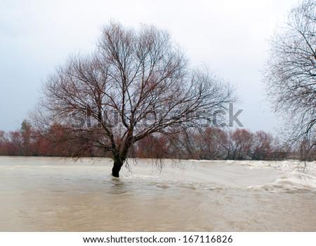 Manavgat River flooded - stock photo
