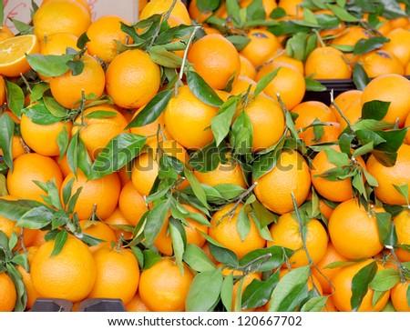 Mandarins background. - stock photo