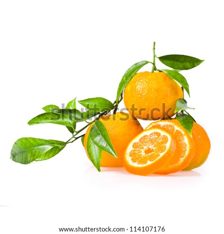 Mandarins whole on a branch with green leaves and cut circles mandarin isolated on white background. - stock photo