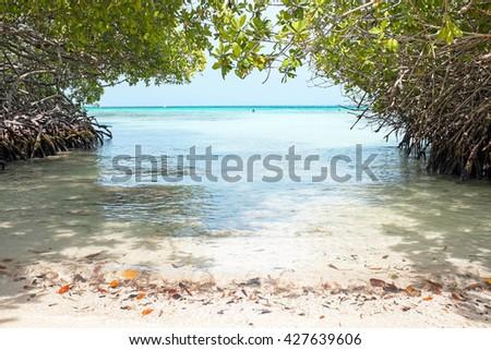 Mangel Halto beach on Aruba island in the Caribbean Sea - stock photo