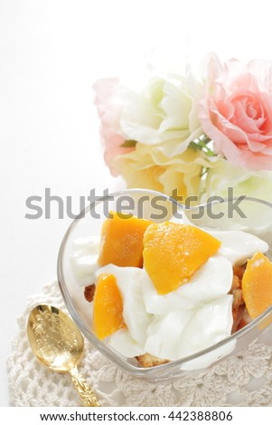 Mango and yogurt on sponge cake for homemade dessert image - stock photo