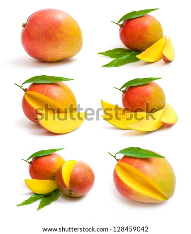 mango collection - stock photo