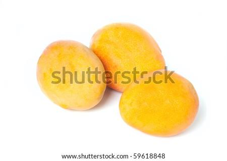 Mango family isolated on white background - stock photo