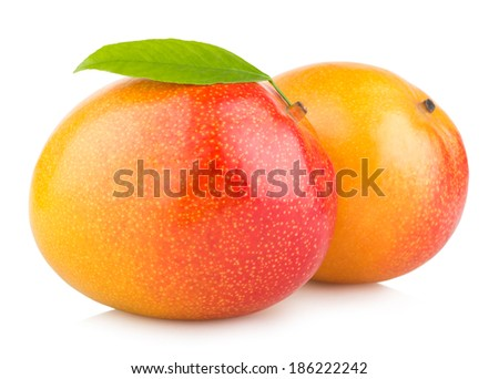 mango fruits isolated on white background - stock photo